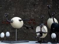 familie_1_fuglene